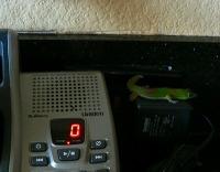 Gecko3_5